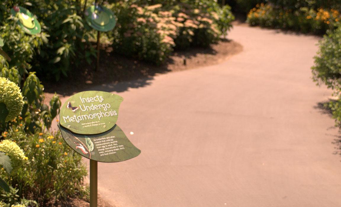 Butterfly Garden, NY